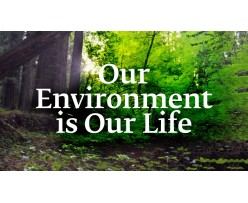 Manager środowiskowy ebook
